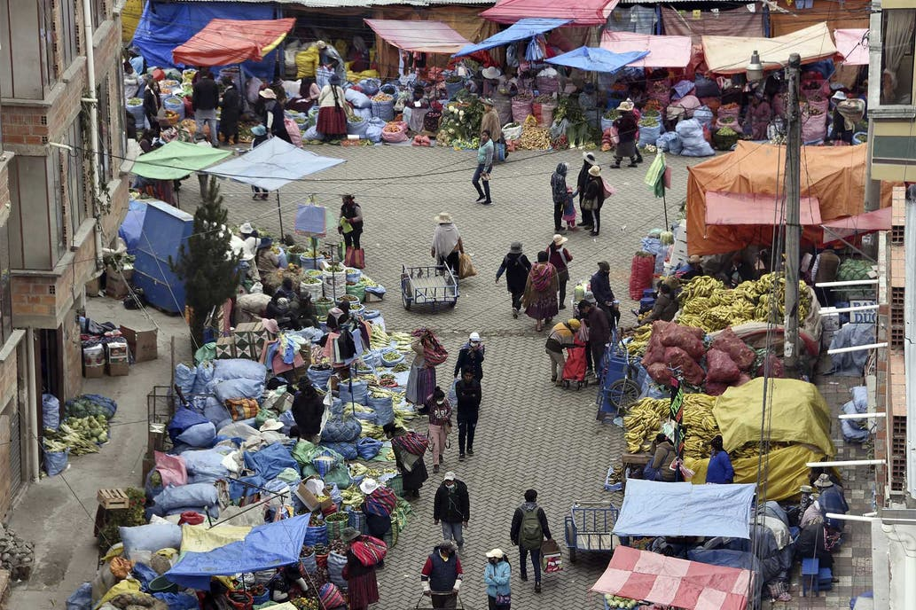 Alerta en Bolivia: descubren un virus letal similar al Ébola
