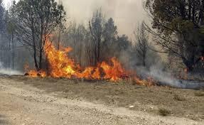 Jujuy es la única provincia de la Argentina donde continúan los incendios forestales de forma activa