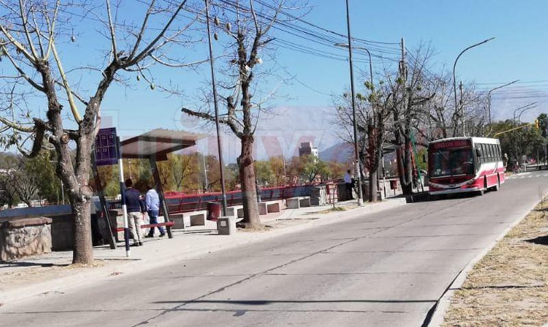 Jujuy: mañana lunes vuelve el transporte público