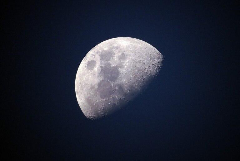 arca-lunar:-proponen-crear-una-boveda-en-la-luna-para-preservar-las-especies-de-la-tierra