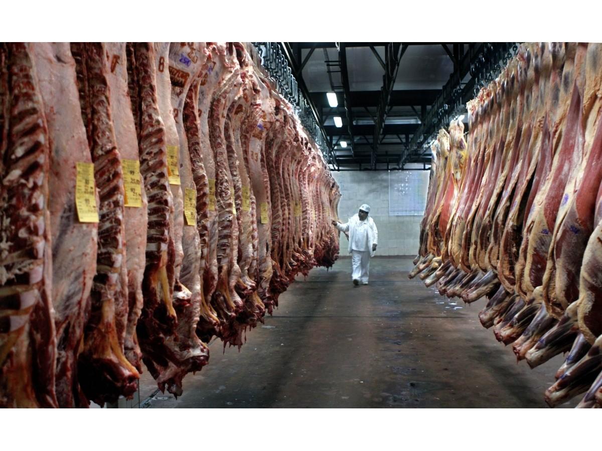 carne:-bajo-el-precio-de-la-hacienda,-pero-todavia-no-se-refleja-en-el-mostrador