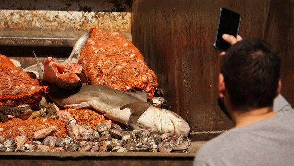 allanaron-supermercados-en-el-barrio-chino-por-venta-de-pescado-en-mal-estado:-se-llevaron-hasta-un-tiburon
